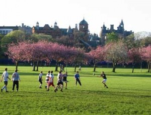 Rugby in the Meadows