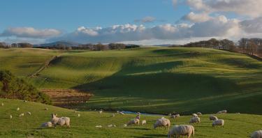 Guida delle Lowlands – luoghi imprescindibili delle Terre Basse scozzesi
